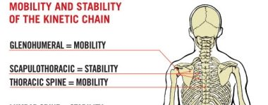 A Bit of Insight on your Chain, Pain, and Weakness